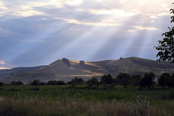Hügel mit Weidelandschaft im Abendlicht (bei Mediasch).