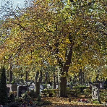 Städtischer Friedhof, Fürth, Herbst