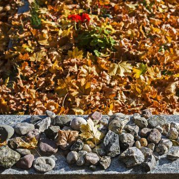 Neuer Israelitischer Friedhof, Fürth, Herbst