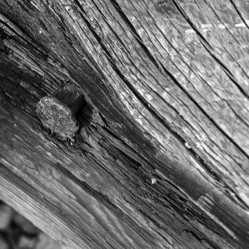 Öland, Trollskogen, Wrack des Schoners Swiks