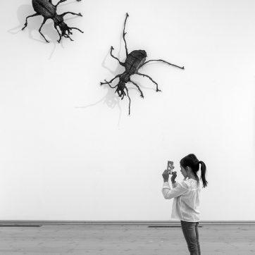 Kunst fotografieren (Frederik Lindquist)