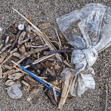 Plastikknoten