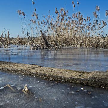 Teich in Westböhmen