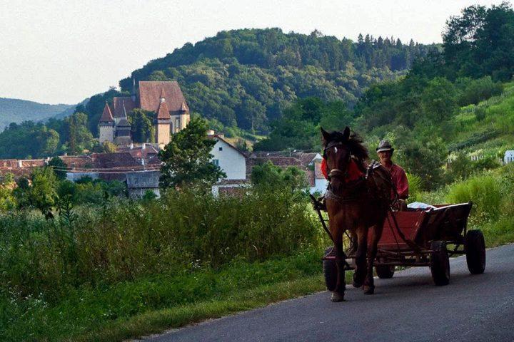 Birthälm / Biertan ist der Schauplatz des alljährlichen Sachsentreffens und sicher eine der beeindruckendsten Kirchenburgen in Siebenbürgen.