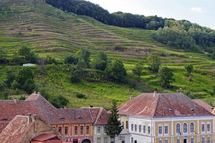 Wie Reichesdorf nebenan lebte man in Birthälm von und mit dem Weinbau. Heute liegen die Weinberge brach.