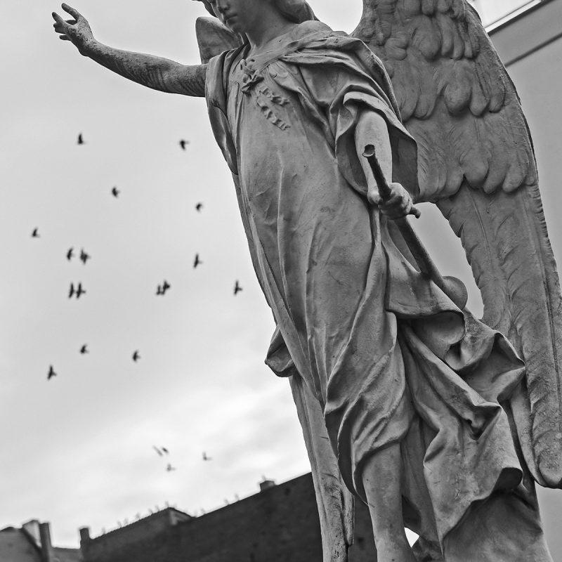 Tauben mit Engel