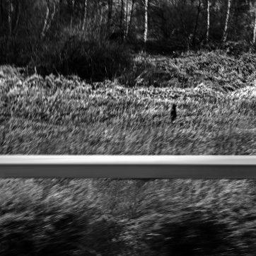 Beifahrer auf der A1