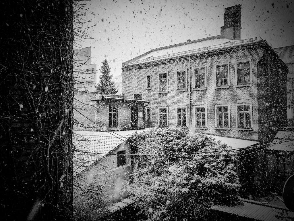 Schneegewitter
