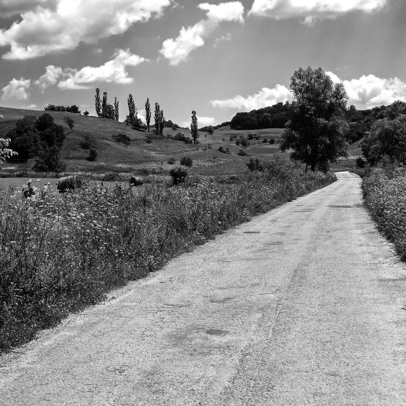 Straße nach Nemșa / Nimesch
