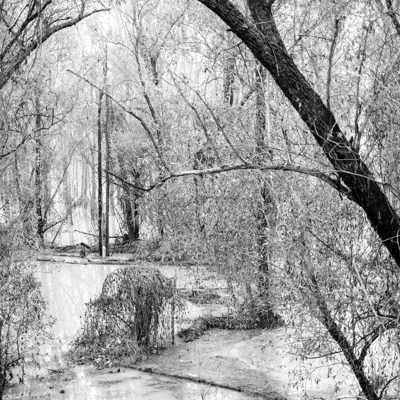 Po, Hochwasser II