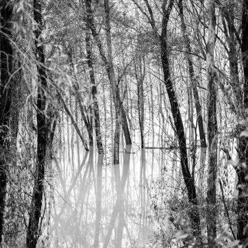 Po, Hochwasser III