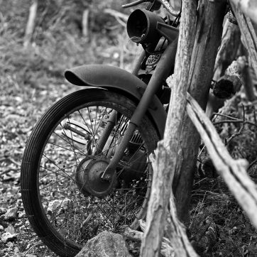 Dekorativer Moped-Schrott auf der Eselweide