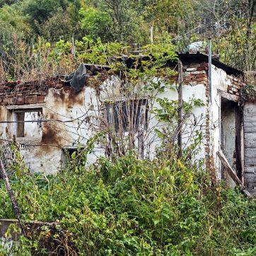 ehemaliger Stall - könnte ein Kinderhaus werden