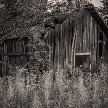 verlassener Hof