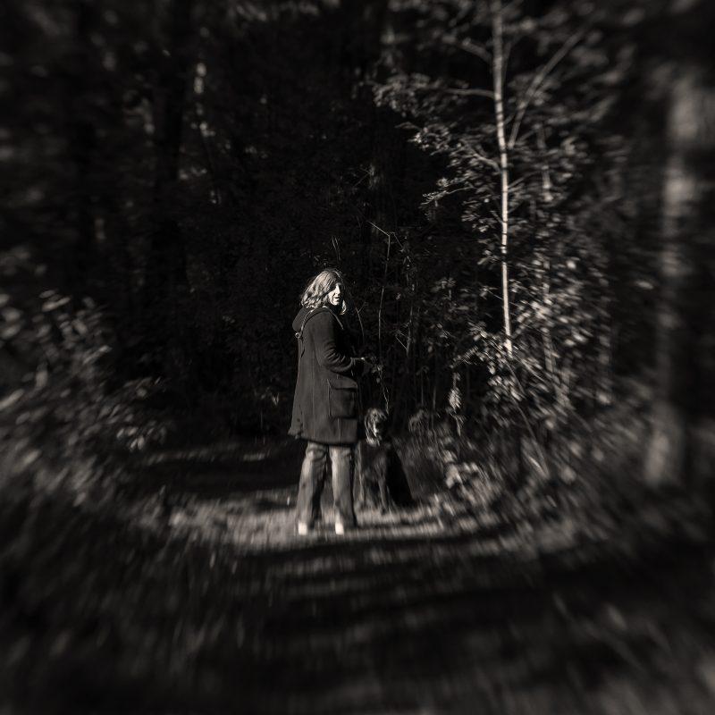 Waldweg, finsterer