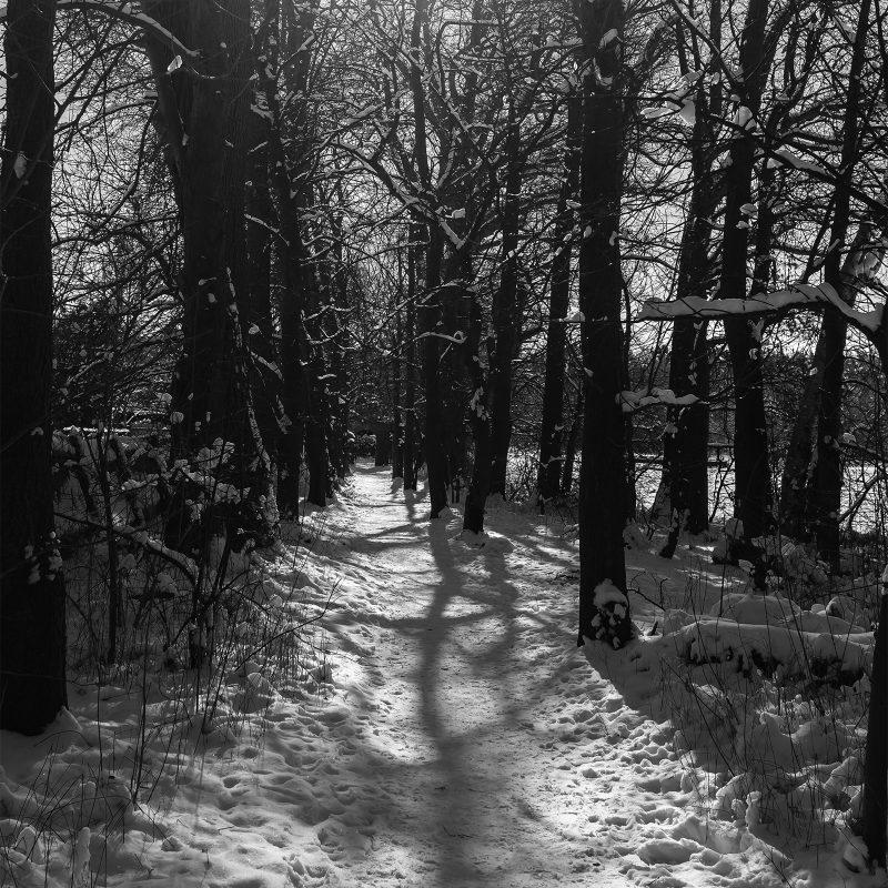 Zugang zum Irrhain